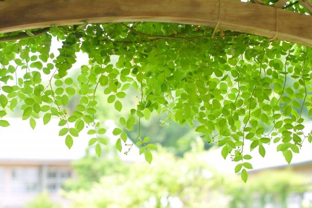 fukushi-shohin_2