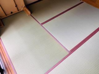 表替え / 熊本産畳表「ひのはるか」(経糸:麻綿)
