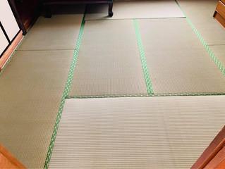 新畳・表替え / 熊本産畳表「ひのみどり」(経糸:綿々)