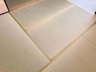 新畳 / 熊本産畳表「ひのみどり」(経糸:綿々)