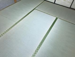 新畳 / 熊本県産畳表・襖 / 貼り替え