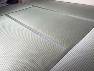 新畳 / 熊本産畳表「夕凪」縦糸  麻綿