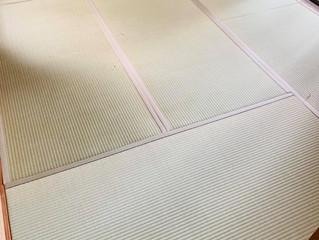 表替え / 熊本産畳表「夕凪」(経糸:麻綿、三番草)