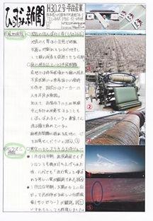 平住産業,畳表,熊本県八代郡,ひらずみ新聞,2018年2月号