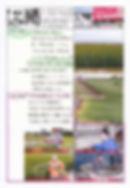 平住産業,畳表,熊本県八代郡,ひらずみ新聞,2019年7月号