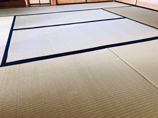 表替え / 熊本産畳表「涼風」(経糸  綿糸)