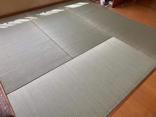 琉球畳(縁無し畳) / 四川七島藺草琉球表