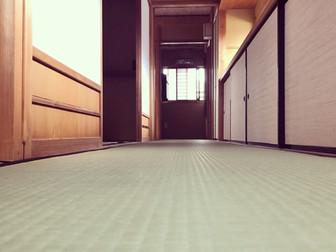 お茶室畳廊下の表替え