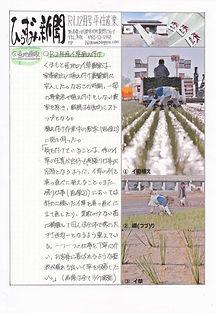 ひらずみ新聞12月号