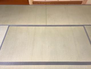 新畳 / 熊本極み表