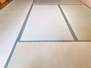 表替え / 熊本県産畳表「ひのみどり」(経糸  綿々)