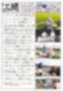 平住産業,畳表,熊本県八代郡,ひらずみ新聞,2017年8月号