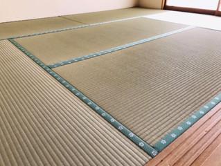 新畳 / 熊本産畳表「夕凪」(経糸:麻綿)