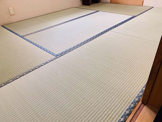 新畳 / 熊本産畳表「ひのはるか」(経糸:綿糸)