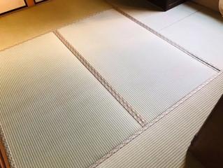 表替え / 熊本産畳表「夕凪」(経糸  麻綿)