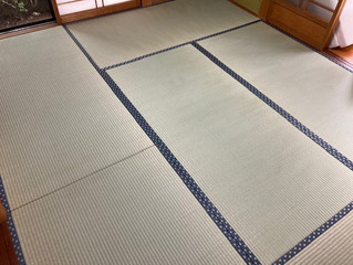 新畳 / 熊本県産畳表