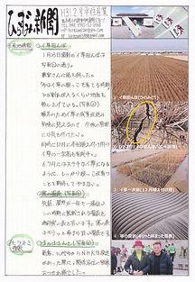 平住産業,畳表,熊本県八代郡,ひらずみ新聞,2019年2月号