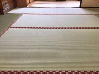 新畳 / 熊本産畳表「夕凪」麻綿畳表