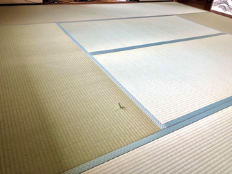 隙間があり床板が見えていた畳の入替え