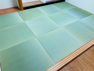 新畳 / 縁なし畳 熊本産目積畳表(経糸:綿々)