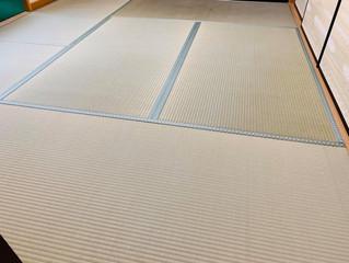 表替え / 熊本産畳表「ひのはるか」(経糸:麻綿、一番草)