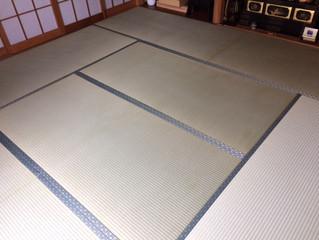 新畳 熊本県産畳表 大和撫子表