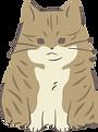 愛知県碧南市,角谷畳店,畳屋,畳替え,ペット用,犬,猫