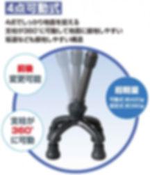 cane-2.jpg