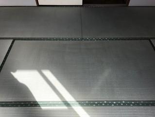 表替え 熊本県産大和撫子表