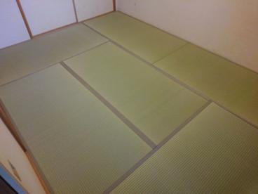 新畳 / 熊本県産 夕凪品種 麻綿表使用