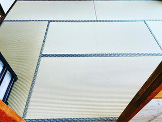 裏返し / 熊本産畳表(経糸:麻綿)