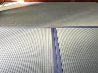 新畳 / 熊本県産畳表 & 襖 / 張り替え
