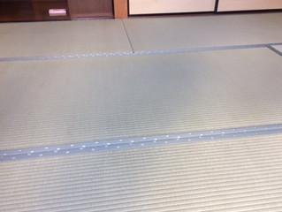 新畳 / 熊本男前表と襖の張替え
