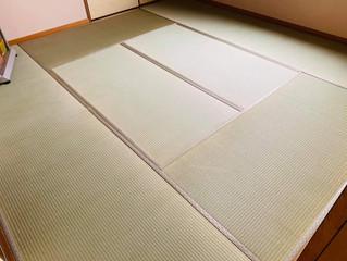 表替え / 熊本産畳表「ひのみどり」(経糸:綿糸)