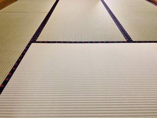 新畳 / 熊本産畳表「ひのはるか」(経糸:麻綿、一番草)