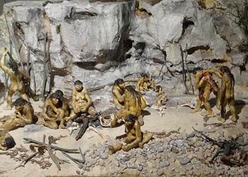 vie-homo-erectus-terra-amata.jpg