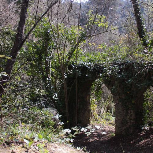 vieux pont vallon obscure jardins.jpg