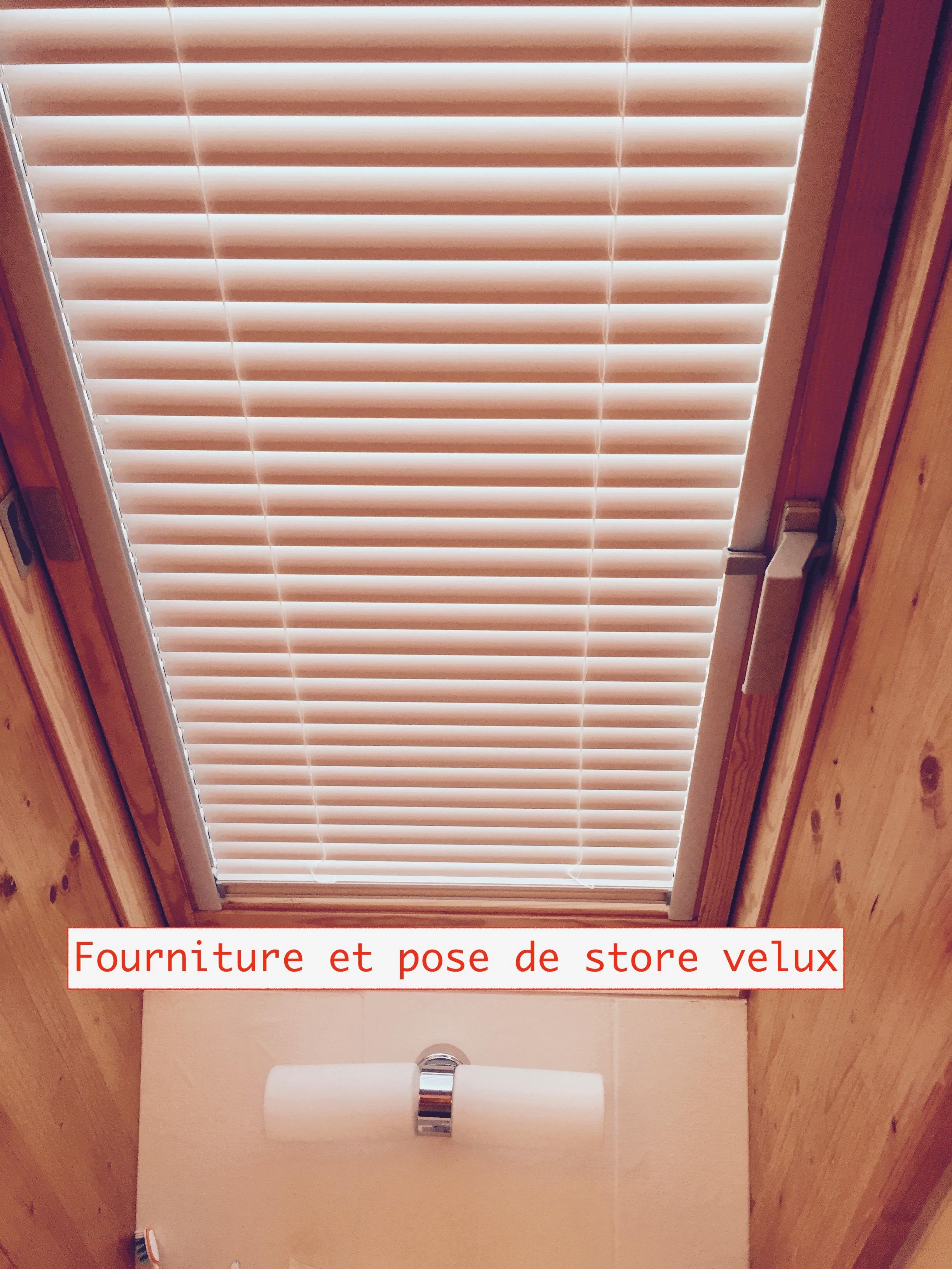 Velux, store, toiture