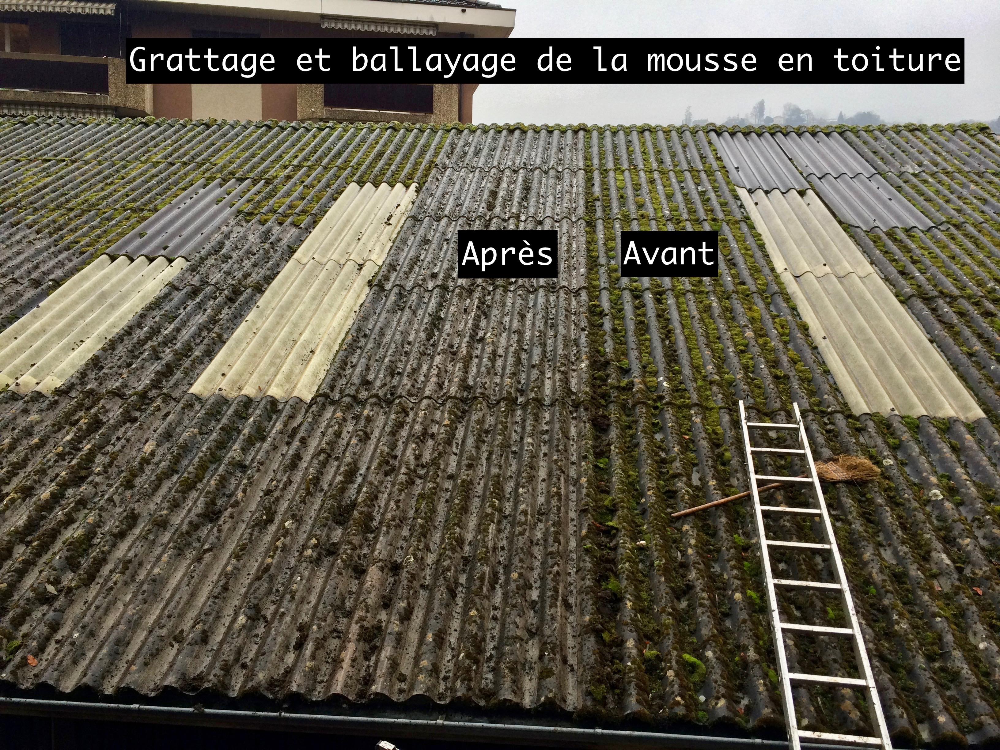 Anti mousse - Algimous - toiture