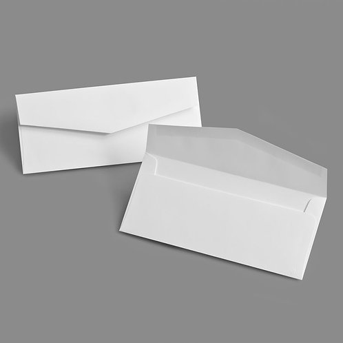 4 x 9 Envelope