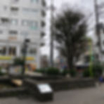 IMG_7336.jpg