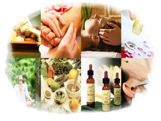 Medicina Tradicional ao alcance de todos