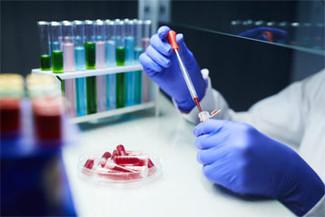 Contrair covid-19 cria imunidade por ao menos seis meses, diz estudo