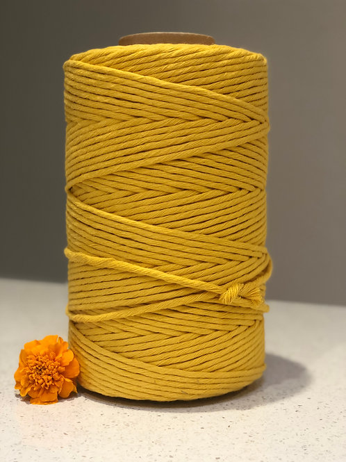 Sunflower | Single Twist String