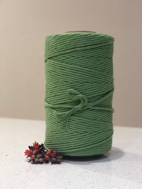 Avocado | Single Twist String