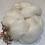 Thumbnail: Baby Alpaca White    Wool Tops