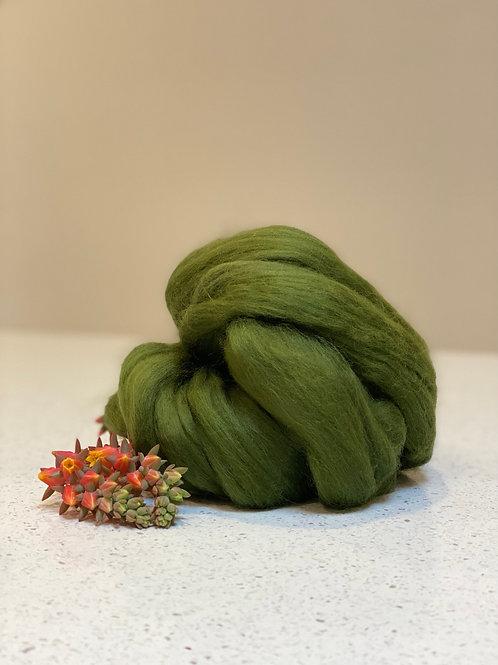 Willow | Dyed Merino Tops