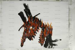 COWBOY ON FIRE.jpg
