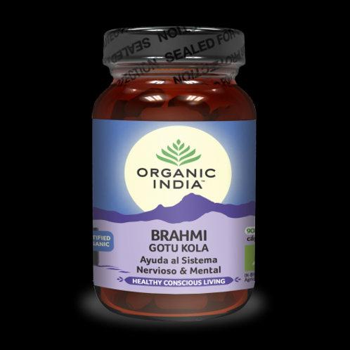 Brahmi Gotu Kola 90caps - Organic India