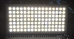 Charlotte LED Luminaire